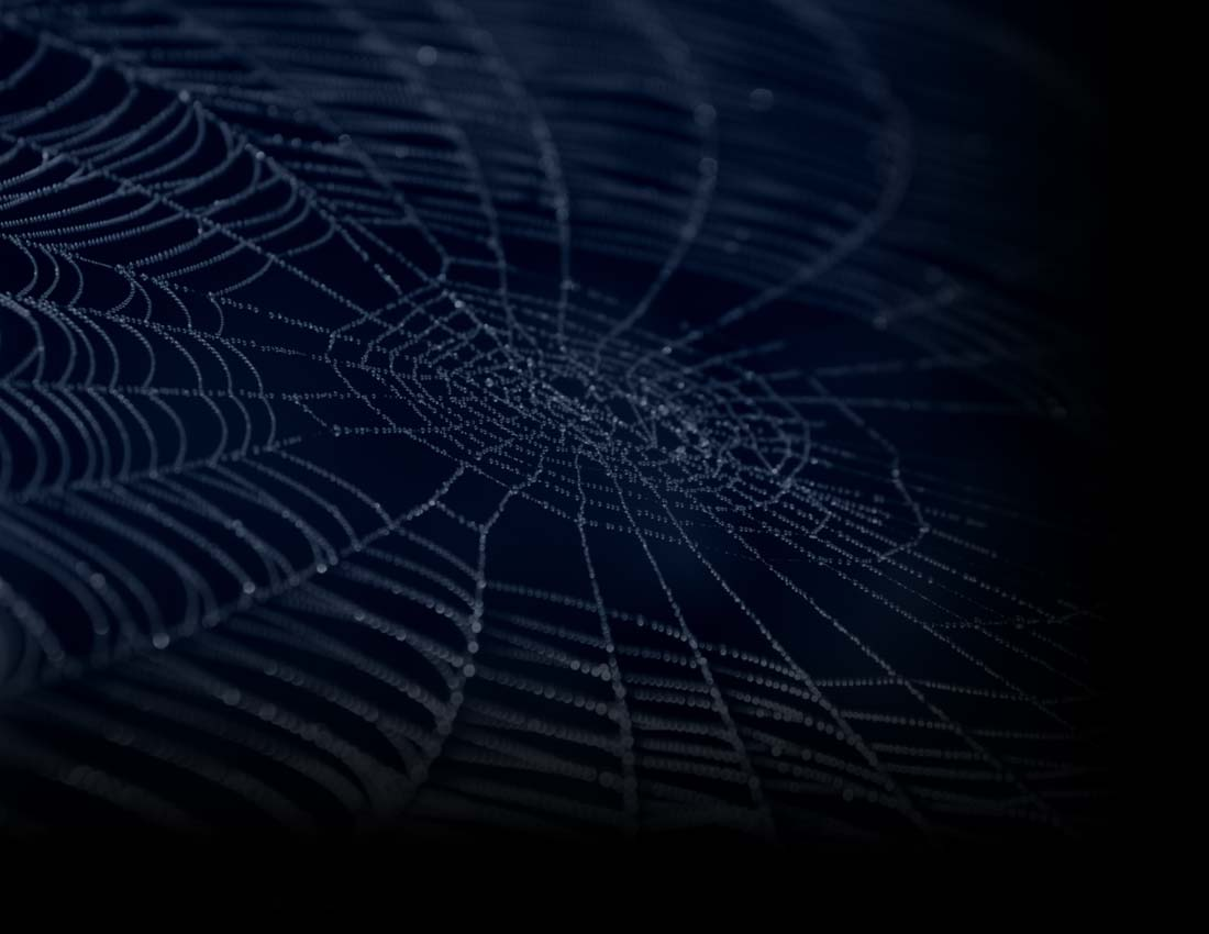Great Spider Web 1100 x 850 · 52 kB · jpeg