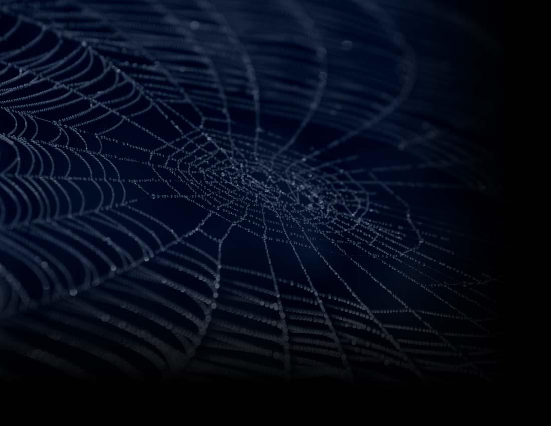 Blue Spider Web Background